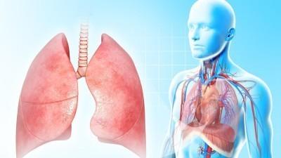 Виды пневмоний у детей: классификация по различным критериям. Отличие бактериальной и вирусной форм
