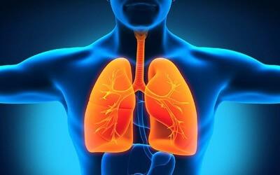 По каким симптомам можно распознать пневмонию? Первые признаки при выявлении разных видов воспалений легких