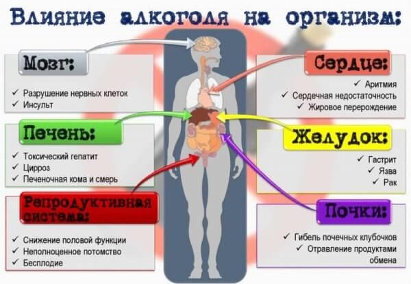 Как влияет алкоголь на легкие и можно ли пить при пневмонии? Советы специалистов