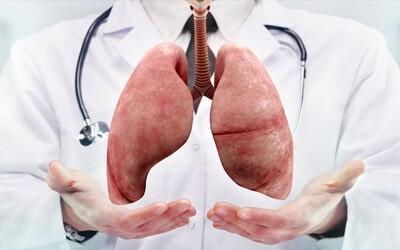 Что такое бронхиальная пневмония? Чем отличается от астмы и других болезней?
