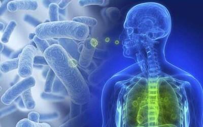 Симптомы и лечение стафилококковой пневмонии. Необходимо ли делать прививку?