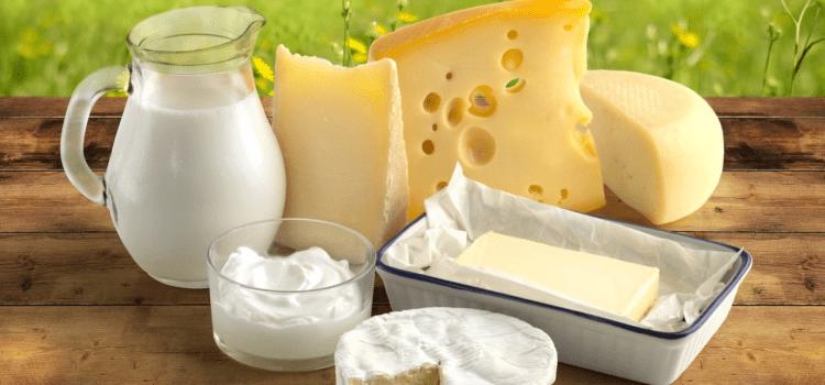 сыр молоко сметана