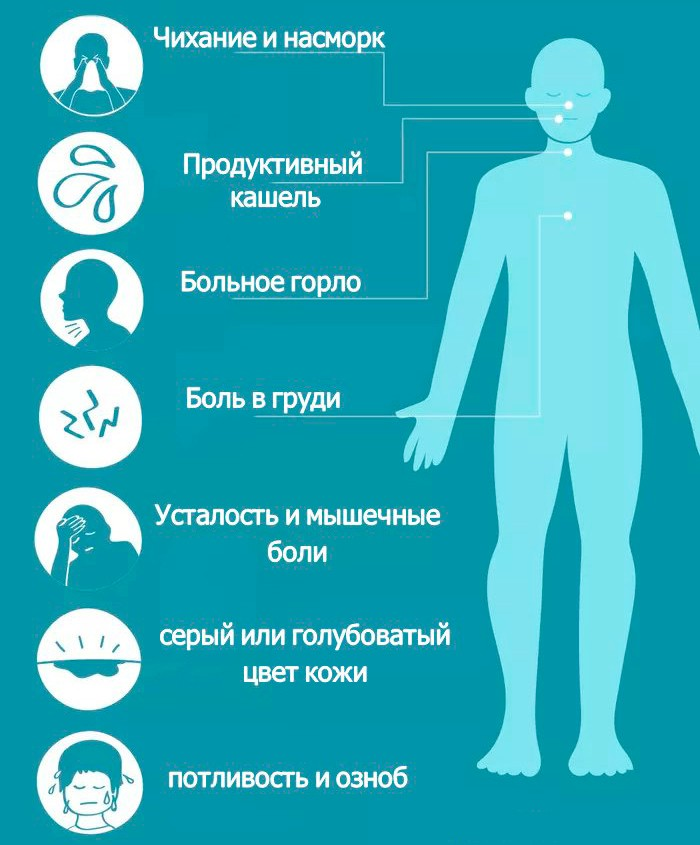 На картинке изображены общие симптомы вирусной пневмонии
